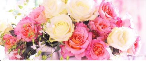 Roses romantique  21cm x 9cm
