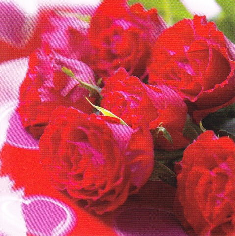 Roses rouges 7.5cm x 7.5cm